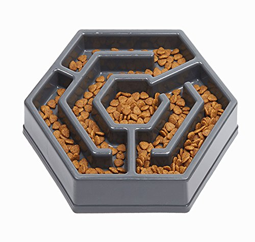 IAMUQ Slow Feeder Bowl - MAZE DESIGN - Pet Interactive Fun Health Slow Feeder Bloat Stop Dog Cat Food Water Bowl