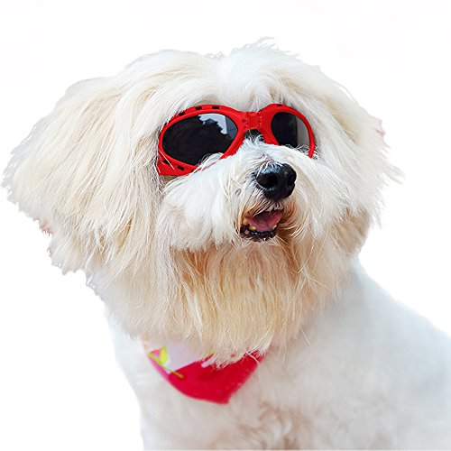 LUCKSTAR Cool Pet Sunglasses Animal Fashion Eye Protection UV Sunglasses New Fashionable Water-Proof Adjustable Elastic Back Strap Antifog Shatterproof Lenses For Pet Dogs Or Cats (Red) by AUTOFLY (Image #6)