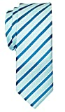 two color ties - Retreez Two-Colour Stripe Woven Skinny Tie - Mint Green and Turquoise