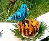 CUTPOPUP BlueBird Pop Up Birthday Card- Ideal