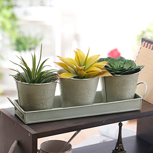Set of 3 Antique White Metal 'GreenGarden' Succulent Planter Pots in Removeable Decorative Tray Removeable Tray