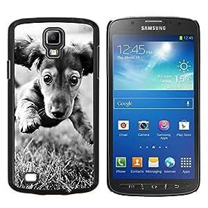 Dachshund Doxie del perro de perrito Negro Blanco- Metal de aluminio y de plástico duro Caja del teléfono - Negro - Samsung i9295 Galaxy S4 Active / i537 (NOT S4)
