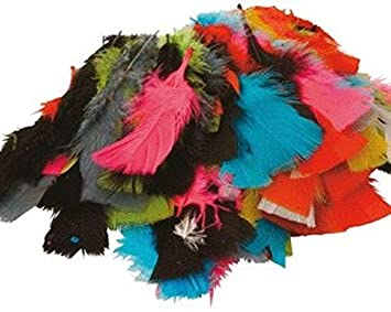 Sachet de 150 plumes 25g couleurs assorties