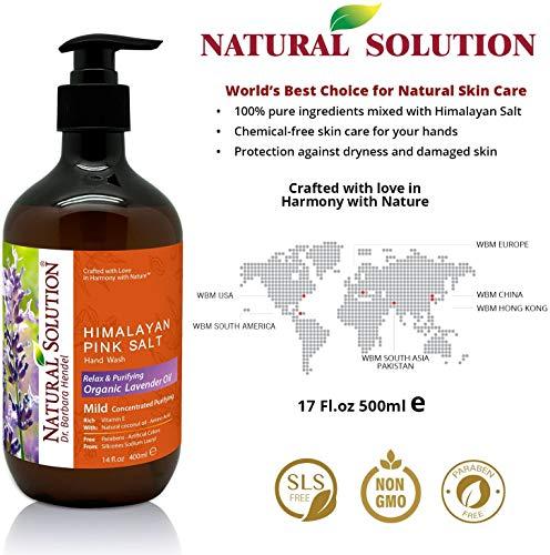 Natural Solution Himalayan Pink Salt Body Wash  Hand Wash with Natural Lavender