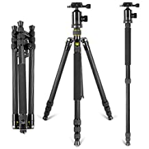 Neewer® Lightweight Portable 66inch/168cm Carbon Fiber Camera Tripod Monopod with 360 Degree Ball Head and Bubble Level, Load Capacity 26.5lbs/12kg(Golden)