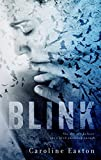 img - for BLINK book / textbook / text book