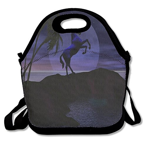 Unicorn Horse Retro Insulated Heating Polyester Shoulder Strap Women Men Kids Boys Black Lunch Bag Tote Purse For Travel Office