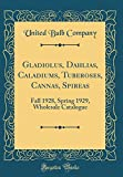 Amazon / Forgotten Books: Gladiolus, Dahlias, Caladiums, Tuberoses, Cannas, Spireas Fall 1928, Spring 1929, Wholesale Catalogue Classic Reprint (United Bulb Company)