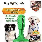 Macro Dog Toothbrush, 2019 Upgraded Natural Rubber Dog Brushing Stick Soft Puppy Chew