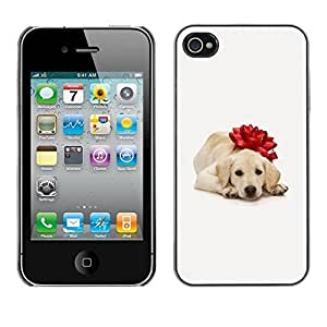 YOYO Slim PC / Aluminium Case Cover Armor Shell Portection //Christmas Holiday Cute Holiday Dog Puppy 1175 //Apple Iphone 4