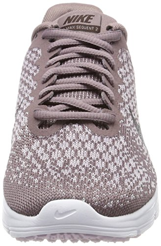 Nike Air Max Sequent 2, Zapatillas de Entrenamiento para Mujer Gris (Taupe Grey/port Wine-plum Fog-iced Lilac)
