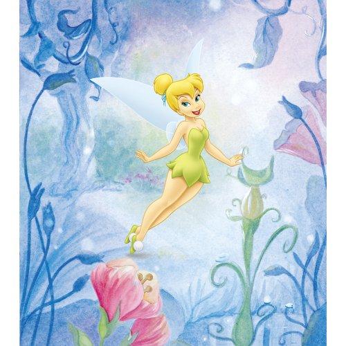 (Disney Fairies