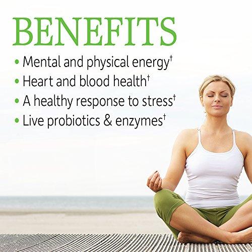 Garden of Life Vegan B Vitamin Vitamin Code Raw B Complex Whole Food Supplement