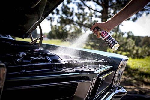 Adam's ECO All Purpose Cleaner - Industrial Strength, Concentrated Formula Can be Diluted Down - Tough on Dirt but Easy on Your Car, You, and The Environment (5 Gallon) by Adam's Polishes (Image #5)