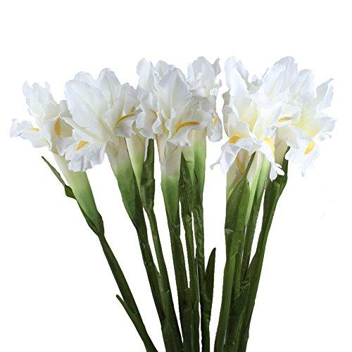 AerWo 5Pcs Artificial Silk Flower Bridal Real Touch Iris Flower for Wedding Party Banquet Home Decoration - Silk Plant Iris