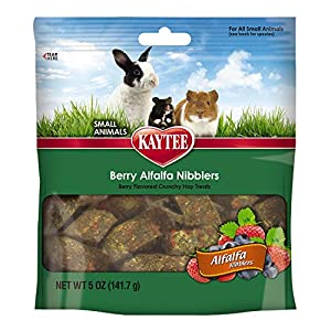 Kaytee Alfalfa Nibblers for Rabbits, Guinea Pigs, and Other Small Animals, Berry, 5 oz