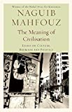 The Meaning of Civilisation: Essays on Culture, Religion and Politics