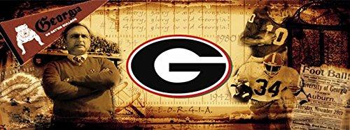 Georgia Bulldogs UGA Vintage Sports Wall Mural Wallpaper 3' x 8' by Sport Walls