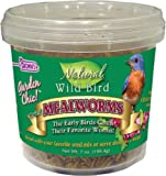 F.M. Brown's Garden Chic Mealworms, 7-Ounce, My Pet Supplies