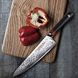 TUO Chef's Knives 8 inch - Damascus Kitchen Chef
