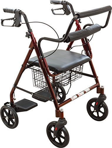 4 Wheel Rolling Walker - ProBasics Transport Rollator Walker With Seat and Wheels - Folding Walker And Transport Chair, Burgundy