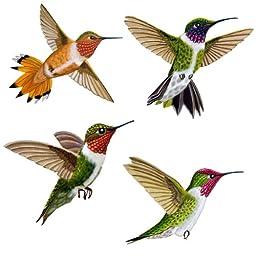 Wild Life Animals Wall Sticker Mural Hummingbirds, Large