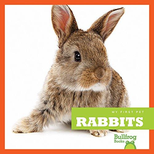 Pet Expert: Rabbits