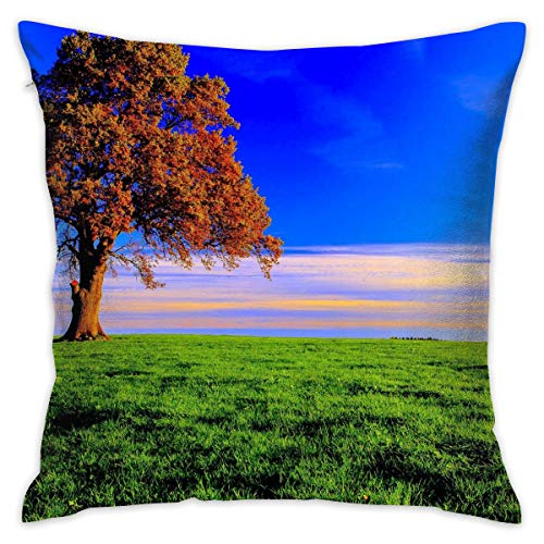 TRK-KWQDF Nice Autumn Tree & Grass Field Throw Pillows Covers for Couch/Bed 18 X 18 Inch, Print for Textile Wallpaper Pattern Home Sofa Cushion Cover Pillowcase Gift Bed Car Living Home