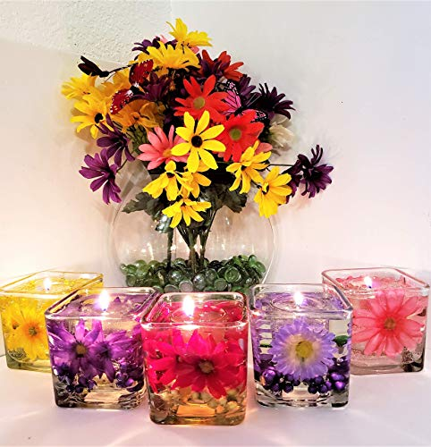 Gel Candle Embeds - Set of 2 Reusable Gel Wax Candles with Daisy Embeds in Variety of Colors