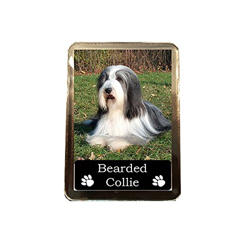 Bearded Collie - Collectable Dog Fridge Magnet