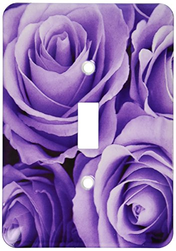 3dRose lsp_27564_1 Soft Lilac Purple Poses Bouquet Toggle Switch, - Bouquet Switchplate