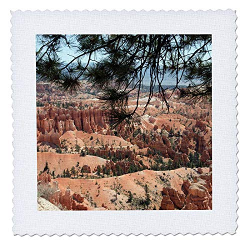 - 3dRose Jos Fauxtographee- Bryce Framed by Trees - Bryce Canyon Framed with Trees on The top - 8x8 inch Quilt Square (qs_302268_3)