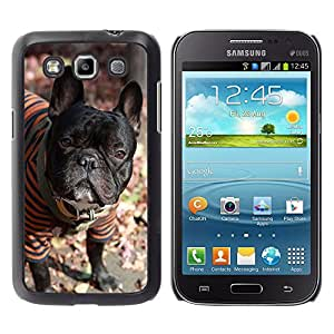 - toy poodle dog? - - Hard Plastic Protective Aluminum Back Case Skin Cover FOR Samsung GALAXY Win I8550 I8552 Queen Pattern