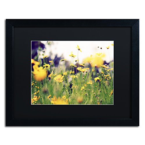 picture of Trademark Fine Art Days in the Sun by Beata Czyzowska Young Black Matte and Black Frame, 16 by 20-Inch