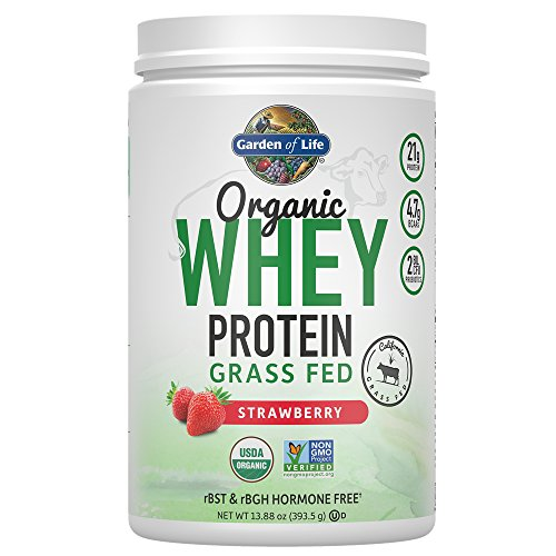 Garden of Life Certified Organic Grass Fed Whey Protein Powder - Strawberry, 12 Servings, 21g California Grass Fed Protein plus Probiotics, Non-GMO, Gluten Free, rBST & rBGH Free, Humane Certified (Delicious Strawberry Protein)