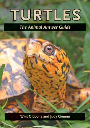 - Turtles: The Animal Answer Guide (The Animal Answer Guides: Q&A for the Curious Naturalist)
