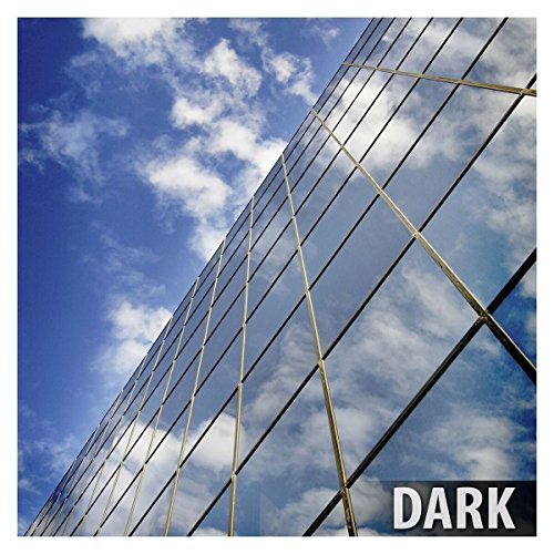 BDF RPRGY Window Film Premium One Way Mirror Privacy Silver/Gray (Very Dark) - 48in X 14ft