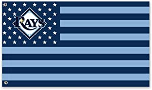 Stockdale Tampa Bay Rays Flag Garden Flag Decorated with Courtyard for Winter 3x5 Ft