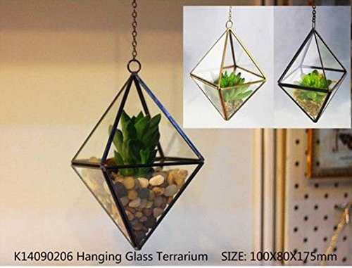 "Noah Decoration Hand-Blown and Handmade Rhombus Hanging Succulent/Air Plants Glass Terrarium with Chain for Home and Wedding Indoor and Outdoor Decoration - BEAUTIFUL DECORATION with your favourite flowers and filler or plant for home and wedding indoor and outdoor. Dimensions (in inches): 3.5"" Width X 3.5"" Length X 7"" height GREAT GIFT for house warming, wedding ceremony, conference, and hotel decoration. - vases, kitchen-dining-room-decor, kitchen-dining-room - 518drI%2BEOXL -"