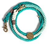 Found My Animal Brass Leash - Teal Fade - Small