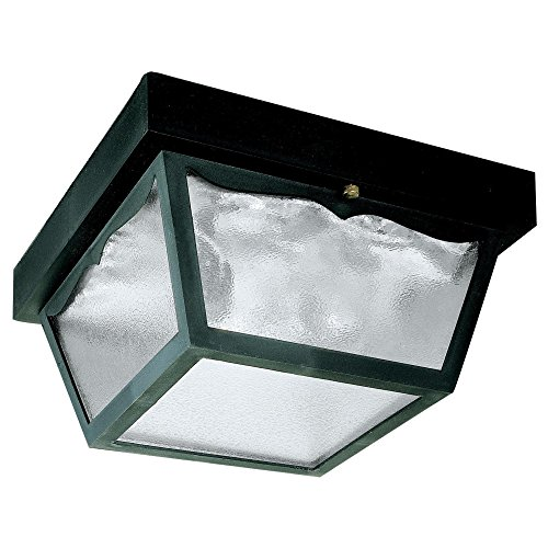 Two Light Outdoor Flush - Westinghouse 6682300 2-Light Porch Clear Glass Panel