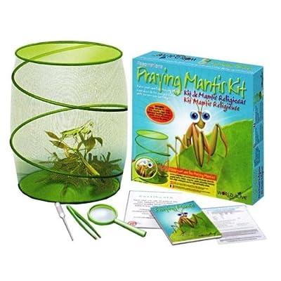 Fascinations World Alive Praying Mantis Kit: Toys & Games