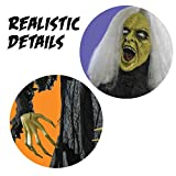 Prextex Halloween Gray Haired Zombie Skull with