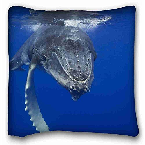 AliHogbenStore animals whales underwater Nature Oceans #:335 Pillow Case Cushion Cover Home Sofa Decorative 18 X 18 Squares