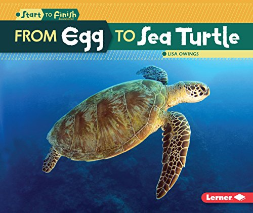 From Egg to Sea Turtle (Start to Finish, Second Series)