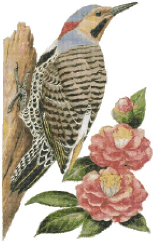 Alabama State Bird and Flower Yellowhammer Woodpecker (Northern Flicker) and Camellia Counted Cross Stitch Pattern ()