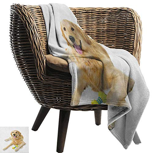 AndyTours Throw Blankets Fleece Blanket,Golden Retriever,Pet Dog Laying Down with Toy Friendly Domestic Puppy Playful Companion, Multicolor,300GSM, Super Soft and Warm, Durable 30