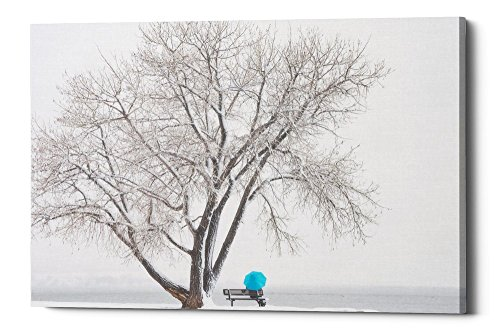 Epic Graffiti Another Winter Alone by Darren White Giclee Canvas Wall Art, 26'' x 40'' by Epic Graffiti