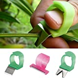 Bazaar 3pcs Adjustable Vegetable Fruit Picker Picking Ring Gardening Stainless Steel Harvesting Cut Tool