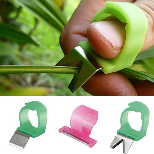 Bazaar 3pcs Adjustable Vegetable Fruit Picker Picking Ring Gardening Stainless Steel Harvesting Cut Tool Big Bazaar